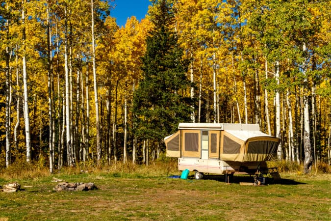 pop-up camper parked in a wooded area in the fall