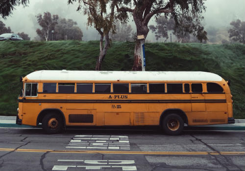 Yellow bus registered as rv near tree